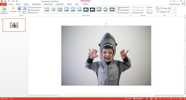 Imagen insertada en PowerPoint